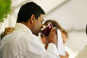 Father Robert Romaine, Parochial Vicar of St. Paul's Parish in St. Petersburg, drinks of the Precious Blood at Communion.
